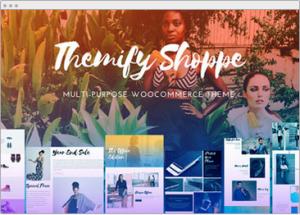 Best wordpress theme for ecommerce